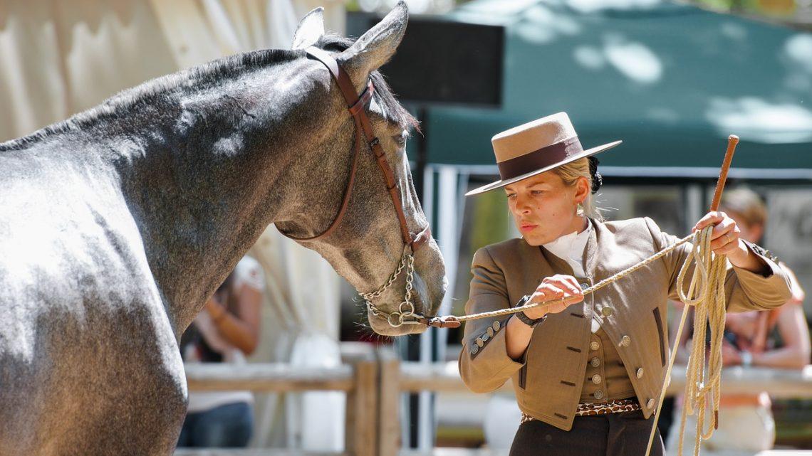 Ce qu'il faut savoir sur les loisirs équestres et le tourisme équestre